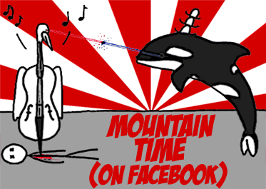 facebook cello orca